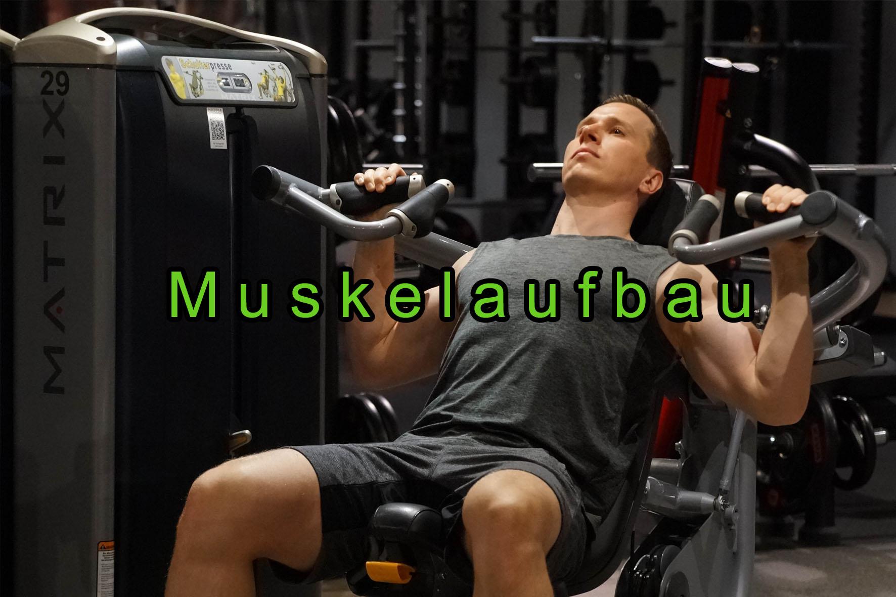 ITEB Muskelaufbau